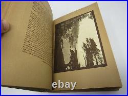 California the Beautiful by Paul Elder Sepia Prints Yosemite John Muir 1911 1st